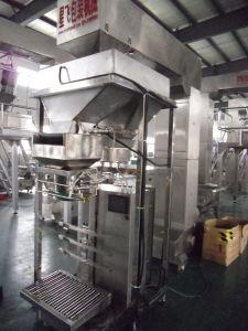 Macchina di rifornimento Pieno-Automatica della polvere del cioccolato con la coclea (XFF-D)