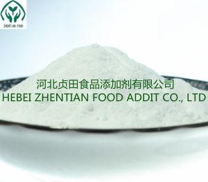 Benzoate van het natrium de Rang van het Voedsel voor Drank voor Drank en de Industriële Professionele Fabriek van de Rang