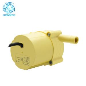 12V 24V 48V de MinidiePomp van het KoelWater van de Motor van BLDC in de Omloop van het Water van de Machine wordt gebruikt