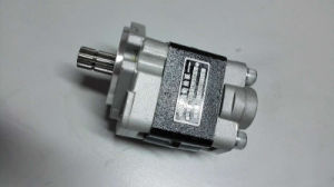 Pompa a ingranaggi idraulica dei pezzi di ricambio del carrello elevatore