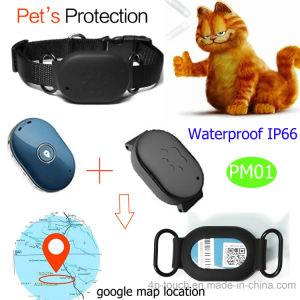 Mini Waterdicht Huisdier/Persoonlijke Draagbare GPS Drijver met GPS/Lbs/WiFi Pm01