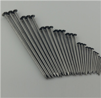 Hete Spijkers van /Wire van de Spijkers van het ijzer de Gemeenschappelijke!
