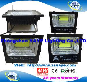 Yaye mejor Venta USD38.5 100W/PC, 60W USD26.5/PC, 40W USD20,5/PC, 25W USD16.5/PC Farol LED Solar, bañadores con 2/3 años de garantía