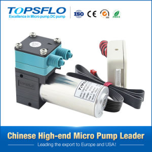 Mikrowasser-Pumpe und Vakuumpumpe (Gleichstrom-schwanzloser Motor)