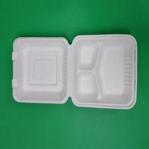 Biodégradable et compostable déjeuner écologique Paper Box
