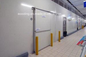 Kundenspezifische große Schuppen-Kaltlagerung für Nahrungsmittellogistik-Absatzzentrum