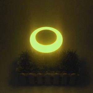 Migliore indicatore luminoso cinese caldo di vendita della decorazione degli indicatori luminosi di natale dei prodotti