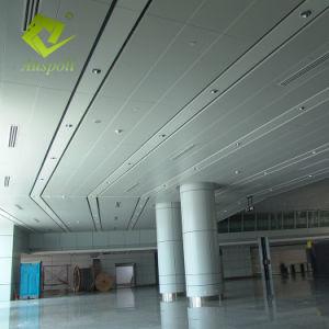 Los paneles de techo lineales perforado Auspoll