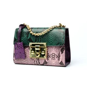 Nuevo diseño de moda Arrivel Python de buena calidad de cuero patrón señoras Bolso Bolso Mujer