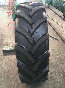grandi pnes