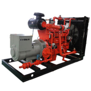 Het Open Type van Reeks van de Generator van het Biogas van het Type van output