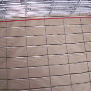1/2の X1/2 網のPVCによって塗られる溶接された網(Q195)