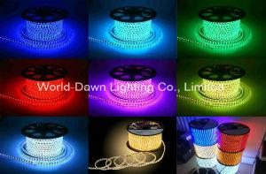 110V 220V LED de alto brillo de la luz de la cuerda de color RGB