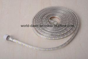 220V/120V Corda de LED de luz com embalagem blister