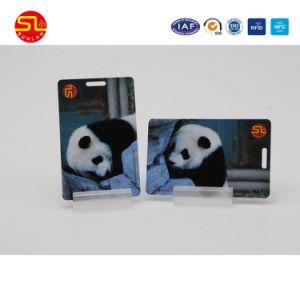 Smart Card di plastica del contatto di alta qualità Cr80 con la striscia magnetica