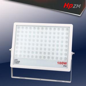 モニタリング及び制御システムのための専門LEDの洪水ライト100W