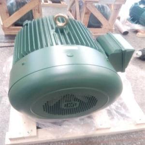 Motore asincrono a tre fasi del rotore della gabbia di scoiattolo
