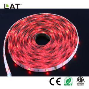 SMD5050 RGB 1m 30/60/120LEDs適用範囲が広いLEDの滑走路端燈