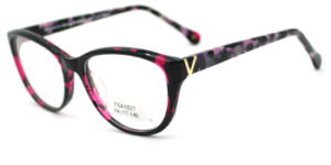 Optische Frame van de Glazen van de Acetaat van Wenzhou het Populaire (FXA1027)
