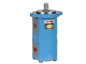 Cbk1010* Serien-Hydrauliköl-Zahnradpumpe verwendet in der Hauptpumpe, Hilfspumpe, wie Maschinenbauwesen