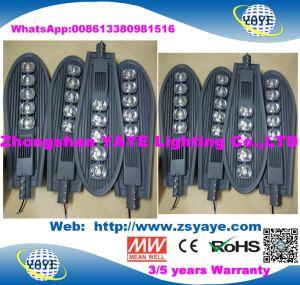 Yaye 18 RoHS Hot VENDRE CE/30W 50W 60W 70W 80W 100W 120W 150W 160W 180W 200W 240W 250W 300W 400W COB SMD LED solaire avec des feux de route de 13 ans le temps de production