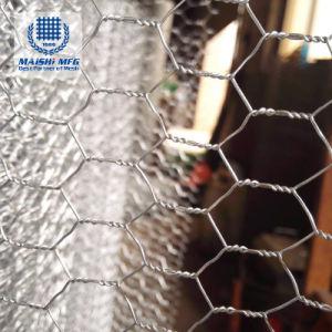 Por imersão a quente Hexagonal galvanizado cerrada para aves de capoeira