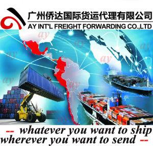 Meilleure expédition de marchandises en provenance de Chine au Népal