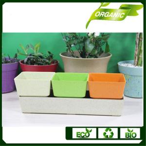 庭のホーム等のプラントのための環境に優しい植木鉢