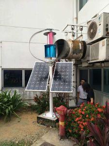96V trifásico de 1000W Aerogenerador de Eje Vertical generador de energía