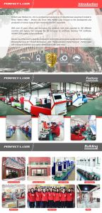 Hot Sale Pedk-130250 acrylique Gravure au laser CO2 des machines de coupe