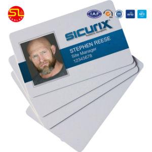 Kaart de van uitstekende kwaliteit van de Foto van identiteitskaart van de Student met SGS Certificatie