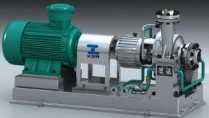 석유화학 가공 펌프 (AYu)의 Ayu 시리즈