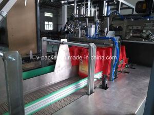Ajuste automático de caso de la Máquina para embalaje de verdura o fruta (Vpak WJ-LLGB-15)