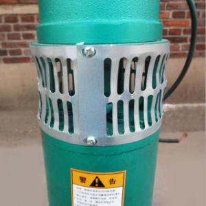 pompa lunga verticale Pakstan dell'acqua di pozzo del tubo dell'asta cilindrica 45kw