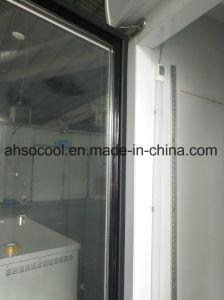 Supermercato congelatore commerciale dritto del portello due di vetro con il certificato del Ce