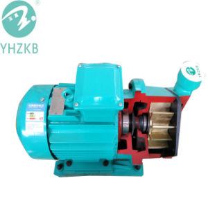 Sk-0.2 la pompe à vide anneau liquide