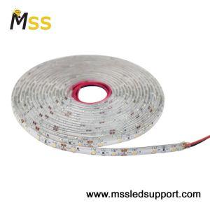 Resistente al agua 60M de 3528 LED/TIRA DE LEDS