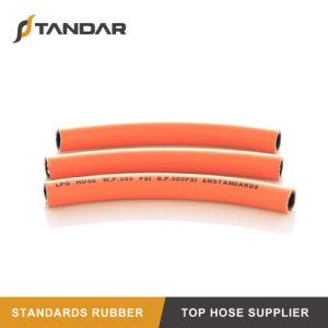 Borracha Hidráulico Flexível de alta pressão a mangueira de GPL com a norma ISO 8789