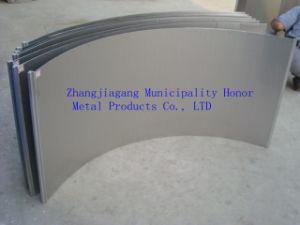 Lo schermo di legare del cuneo, il piatto dello schermo dell'acciaio inossidabile, pressione ha curvato lo schermo /Sieve (S2-1)