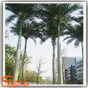 Paisagismo árvore grande árvore de Coco artificiais para decoração