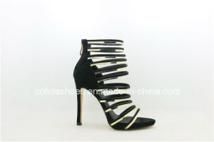 Dernière sangle Sexy High Heels Lady sandale chaussures