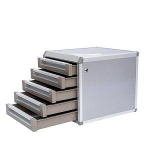 자물쇠를 가진 알루미늄 파일 저장 장소 내각 5개의 층