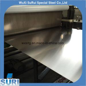Strato dell'acciaio inossidabile del commestibile 304L 316 316L degli ss AISI 304 con il prezzo basso e la buona qualità