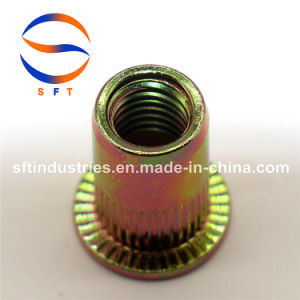 À TÊTE PLATE M5 corps rond l'écrou rivet moleté ISO13918
