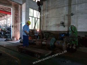 Caixa do Grupo Horizontal da Bomba de Óleo de Sucção Dupla para uma refinaria de petróleo