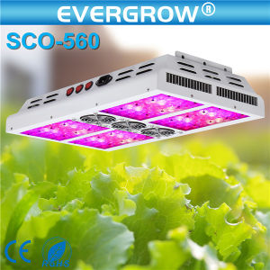 Distribution를 위한 Hydroponic Advanced LED Grow Light