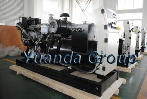 180kVA de stille Diesel van Lovol van het Type Reeks van de Generator met Laagste Prijs
