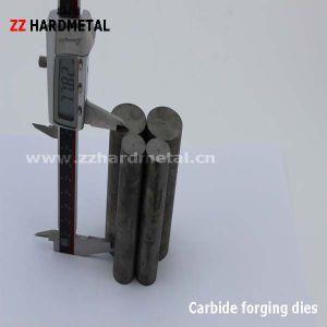carburo de tungsteno muere de forja en frío (pellets)