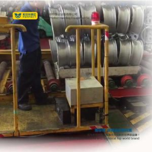 sulla guida che tratta gli elementi portanti di trasferimento della bobina del carrello con l'unità sicura