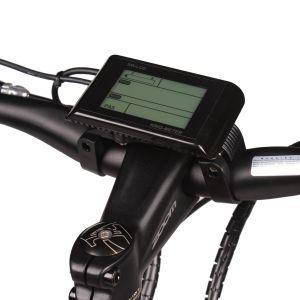 48V 500W Batería de los neumáticos de la Grasa de montaña bicicleta eléctrica con Ce EN15194